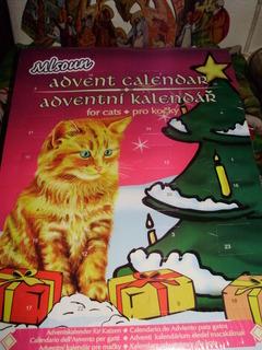 FOTKA - Adventní kalendář pro kočky