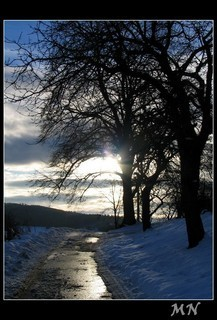 FOTKA - cesta ke slunci