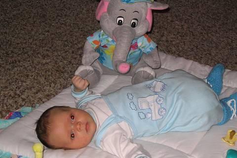 FOTKA - Ondrášek a slon