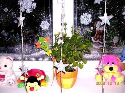 FOTKA - Vánoční dekorace 2