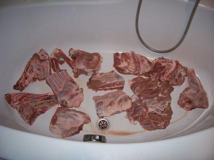 FOTKA - Půl divočáka ve vaně