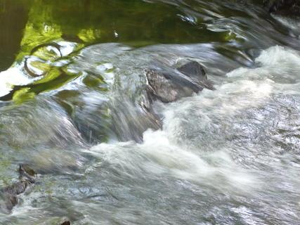 FOTKA - u řeky