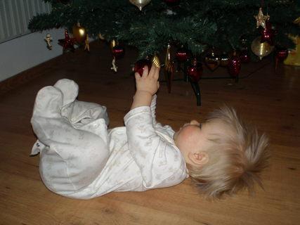 FOTKA - ...až se ráno probudí budou Vánoce
