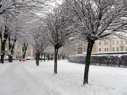 FOTKA - Sněhová kalamita v Hradci.