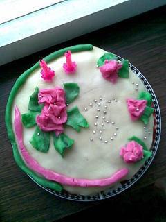 FOTKA - Můj dort : )