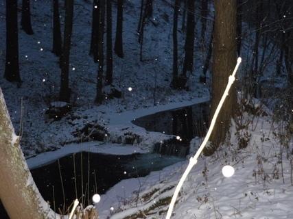 FOTKA - zimni prochazka,snezi