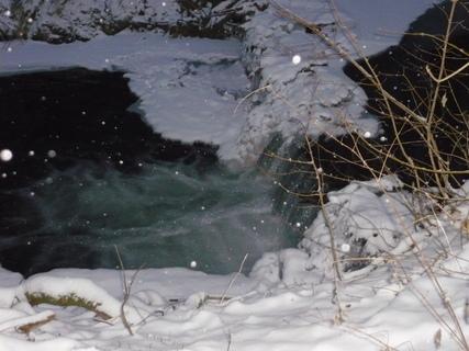 FOTKA - zimni prochazka,potucek