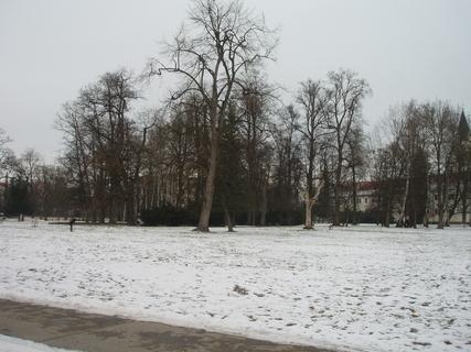 FOTKA - Třeboň,,.
