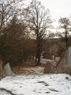 FOTKA - zimní procházka,.,.,.,.,.,.