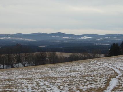FOTKA - zimní procházka....