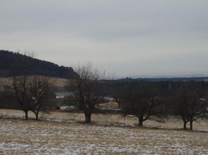 FOTKA - zimní procházka.....