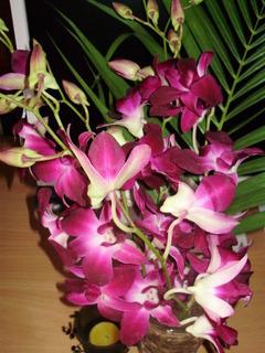 FOTKA - Udělala jsem si radost kytičkou