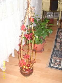 FOTKA - Vánoční dekorace