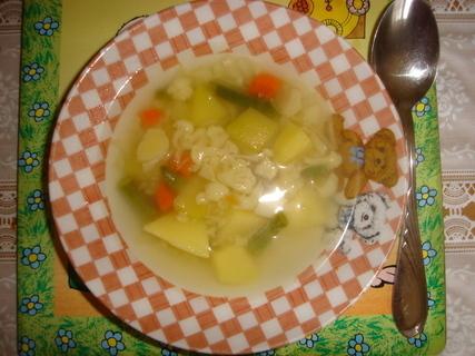 FOTKA - zeleninová polévka pro děti