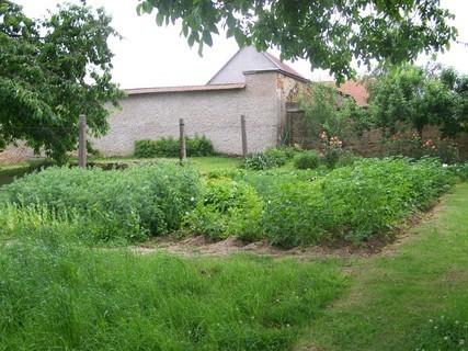 FOTKA - zahrada