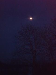 FOTKA - Noc a měsíc .