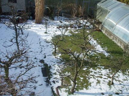 FOTKA - zahrada dnes