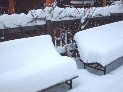 FOTKA - Sníh na náše záhradě - 15.2.2009