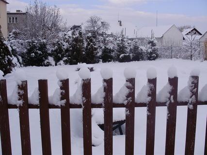 FOTKA - Zasněžená zahrada