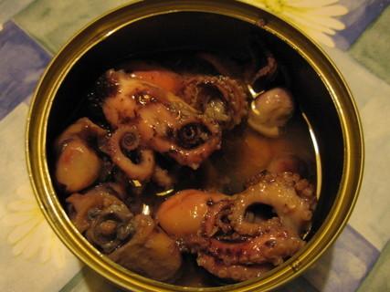 FOTKA - chobotničky