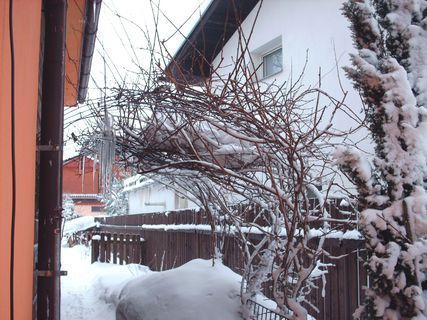 FOTKA - Sníh   u domů - 25.2.2009.