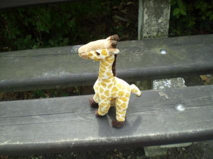 FOTKA - narozeninová žirafka:o))