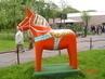koník v parku