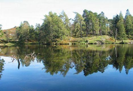 FOTKA - u vody