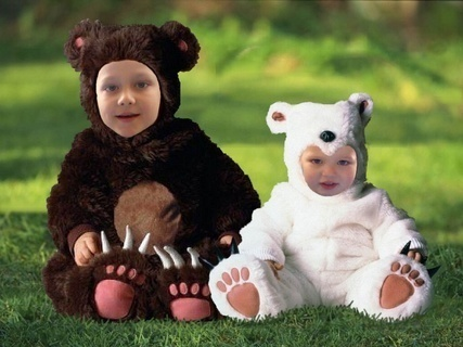 FOTKA - medvidci