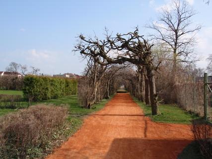FOTKA - Zámecká zahrada(Chrast u Chrudimi)