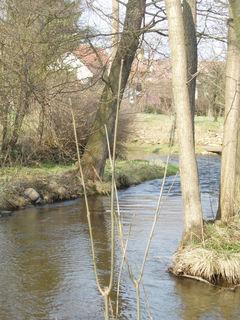 FOTKA - K�eme�sk� potok v Brloze