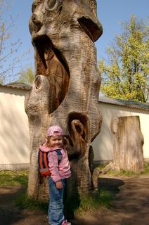 FOTKA - Zoo Hluboká nad  Vlt.