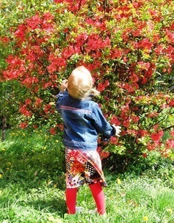 FOTKA - Na zahradě1
