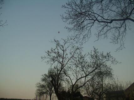 FOTKA - Létající balón, tam někde v dáli.