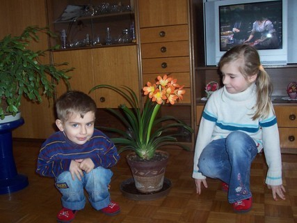 FOTKA - Jiřík, Nelinka a klívie