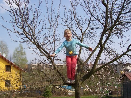 FOTKA - Neli na stromě