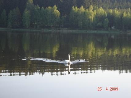 FOTKA - Domanínský rybník\