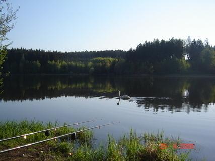 FOTKA - §§§Domanínský rybník