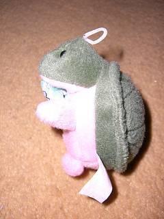 FOTKA - želvička od Wüstenrotu