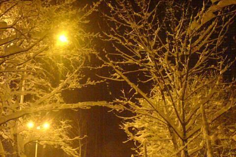 FOTKA -  všude byl sníh
