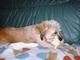 Aisha  spi s novou hr��kou- 26.5.2009