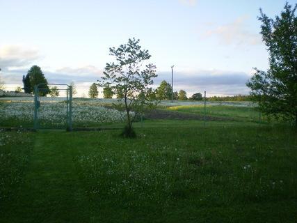 FOTKA - Na zahradě