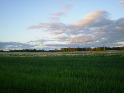FOTKA - Pohled ze zahrady