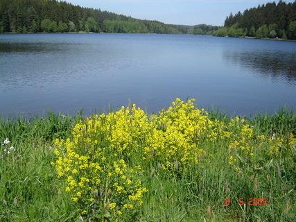 FOTKA - rybník§