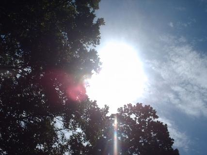 FOTKA - Po bouřce vždy svítí slunce... - rano 27.5.2009.