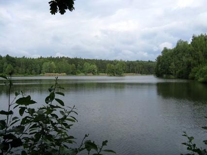 FOTKA - Zmoklý rybník