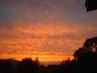 Včerejší západ slunce/ z okna/.