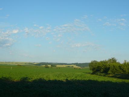 FOTKA - příroda-moje okolí