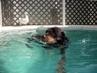 S plavčíkem v zádech