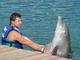 potykání s delfínem